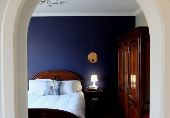 Appartement à Colmar - Chez Thomas ***