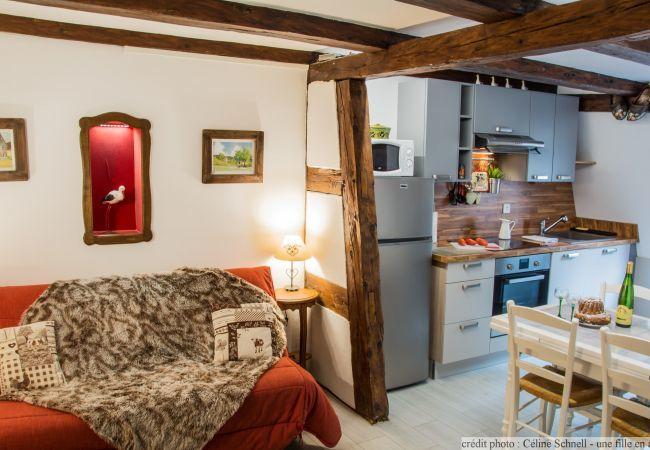 公寓 在 Colmar - Le repère des Cigognes **** (Le Clos Bartholdi)